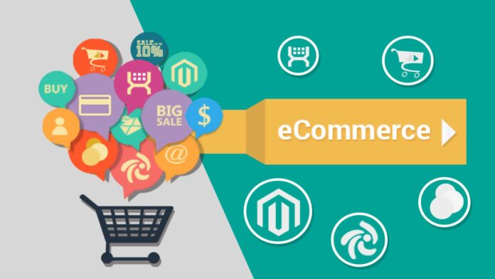 The E-Commerce Project: from Illusions to Solutions